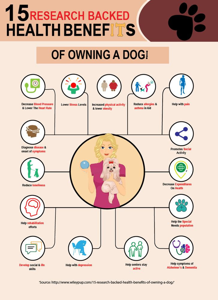 dog health 2.jpg